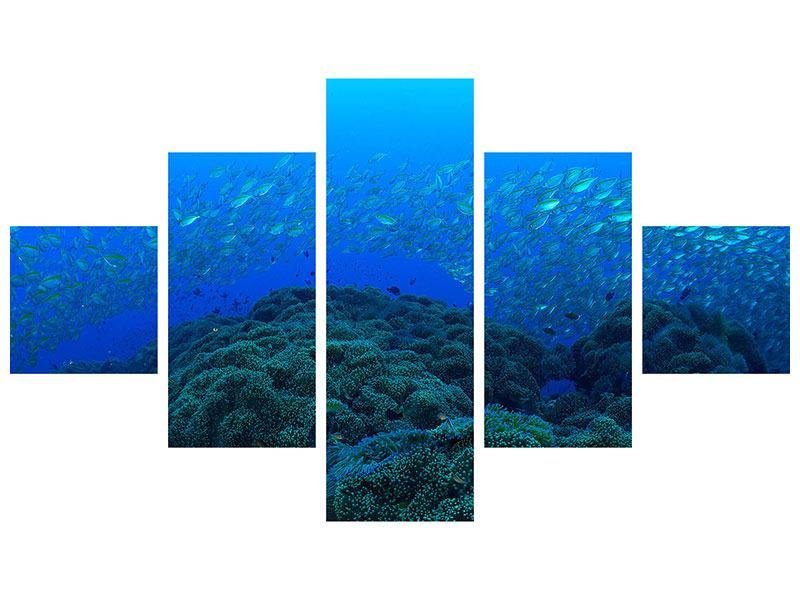 Aluminiumbild 5-teilig Fischschwärme