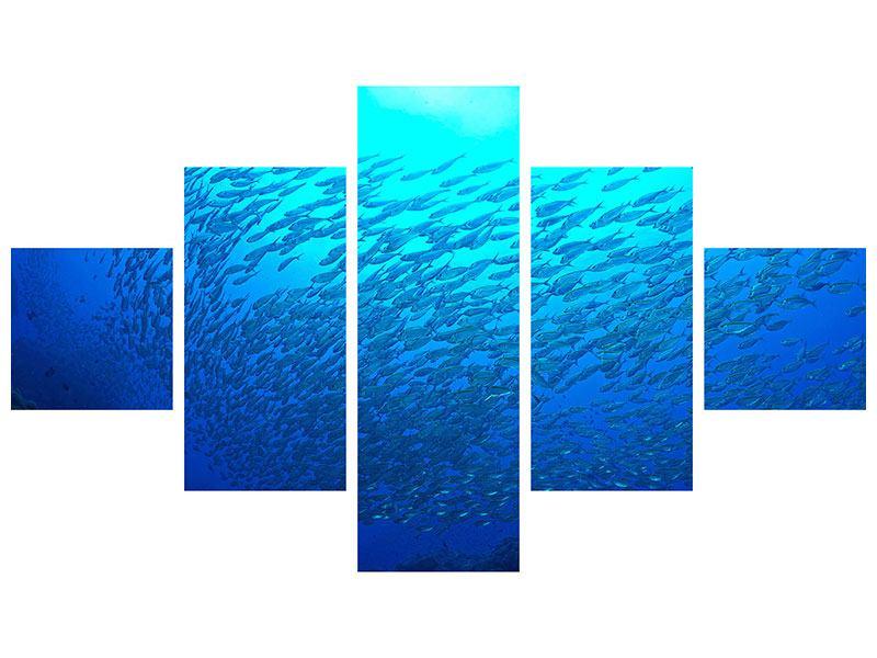 Aluminiumbild 5-teilig Fischwelt