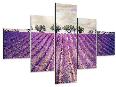 Aluminiumbild 5-teilig Das Lavendelfeld
