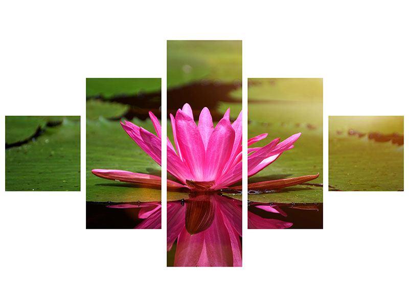 Aluminiumbild 5-teilig Lotus im Wasser
