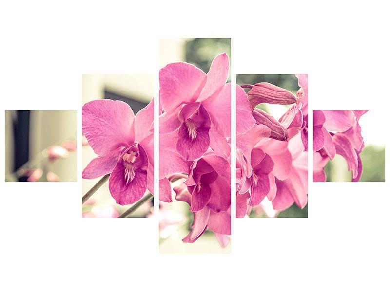 Aluminiumbild 5-teilig Ein Fensterplatz für die Orchideen