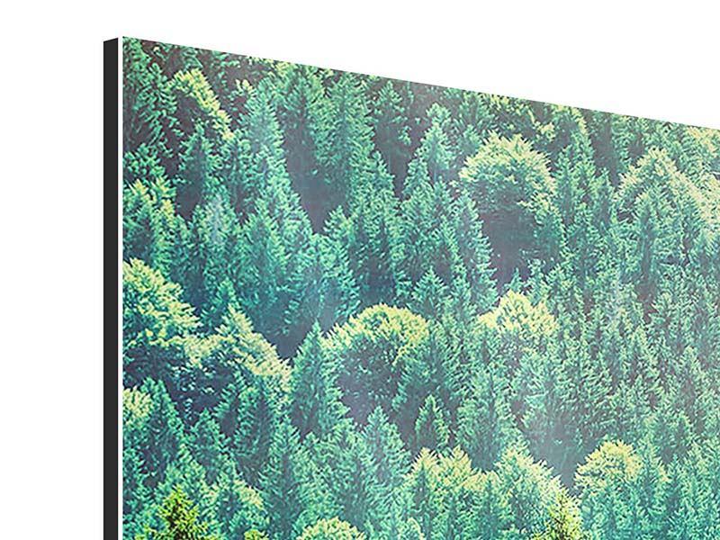 Aluminiumbild 5-teilig Der Waldhügel