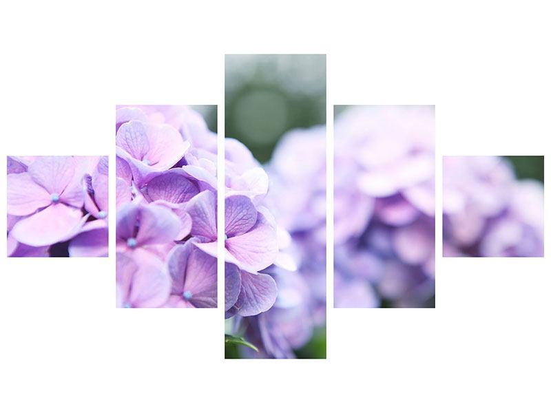 Aluminiumbild 5-teilig Hortensien
