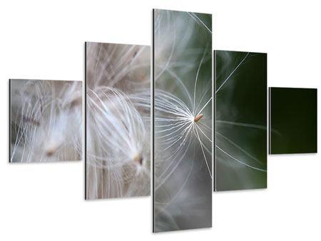 Aluminiumbild 5-teilig Close up Blütenfasern