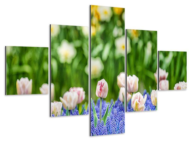 Aluminiumbild 5-teilig Ein Garten mit Tulpen