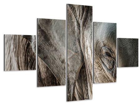 Aluminiumbild 5-teilig Close Up Elefant