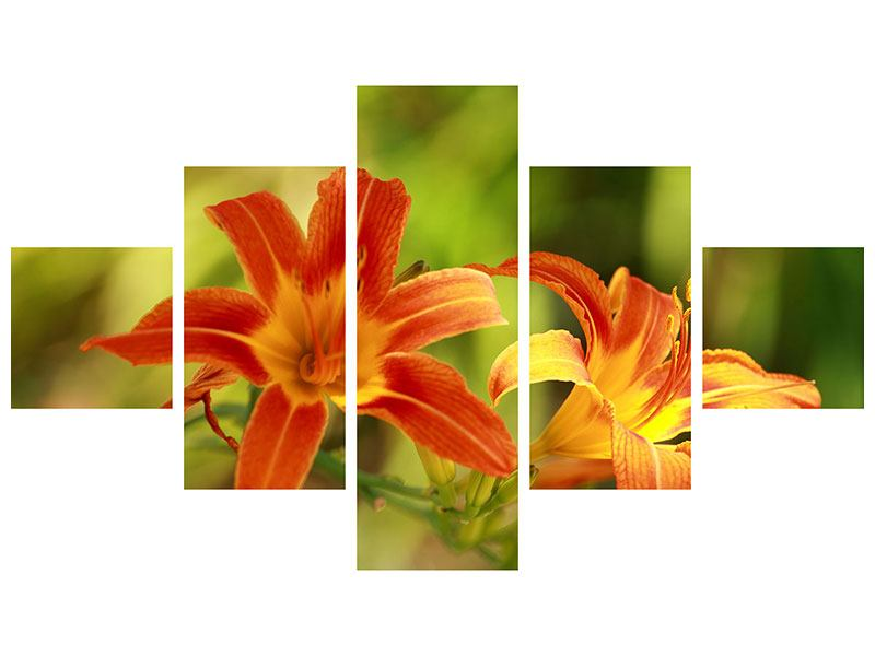 Aluminiumbild 5-teilig Natural Lilien