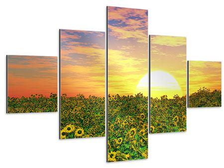 Aluminiumbild 5-teilig Blumenpanorama bei Sonnenuntergang