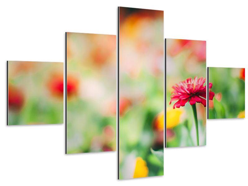 Aluminiumbild 5-teilig Im Blumengarten