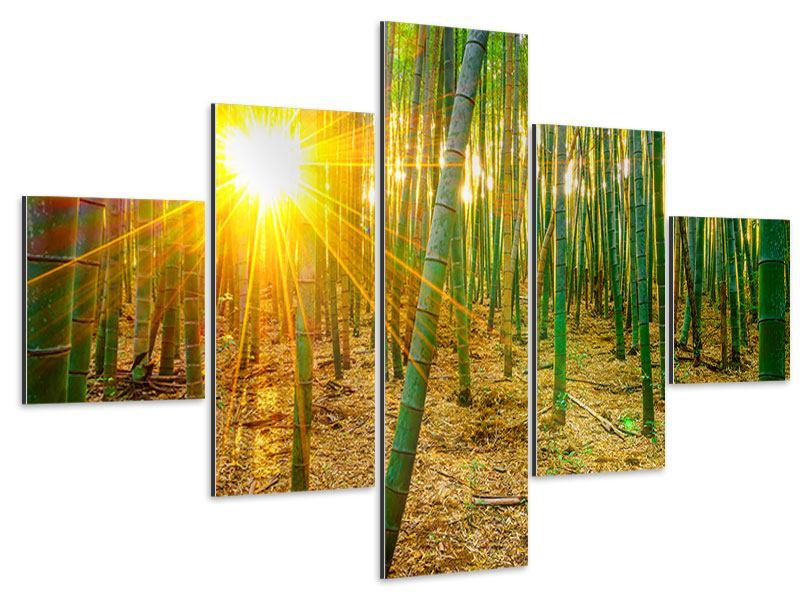 Aluminiumbild 5-teilig Bambusse