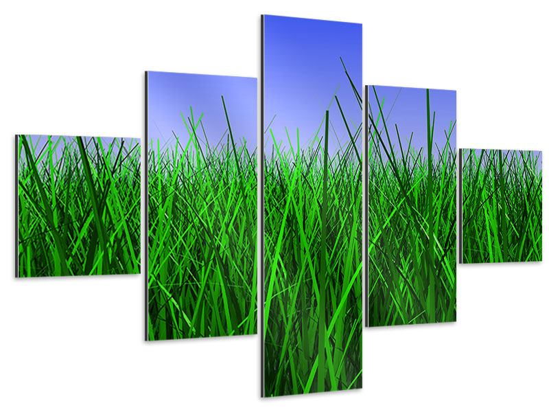 Aluminiumbild 5-teilig Im Gras