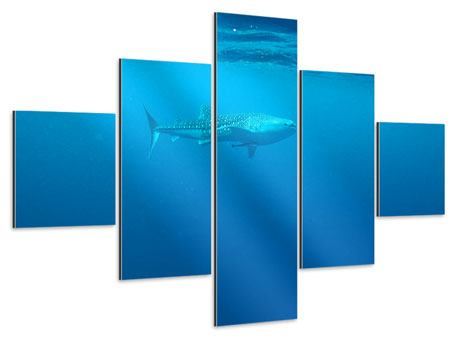 Aluminiumbild 5-teilig Der Walhai
