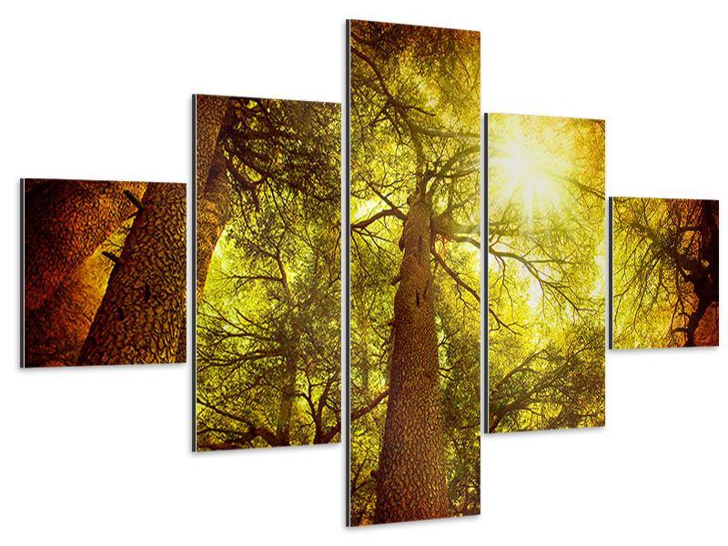 Aluminiumbild 5-teilig Cedar Baum