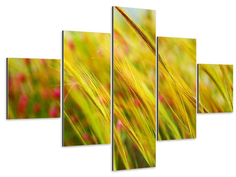 Aluminiumbild 5-teilig Das Weizenfeld