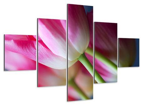 Aluminiumbild 5-teilig Makro Tulpen