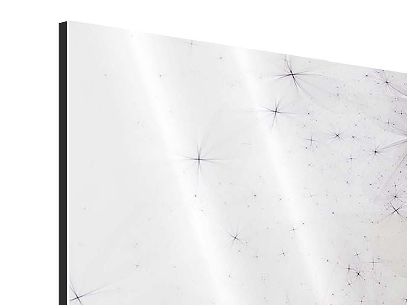 Aluminiumbild 5-teilig Abstrakte Blumen
