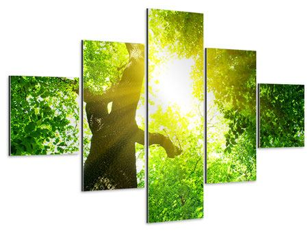 Aluminiumbild 5-teilig Baum