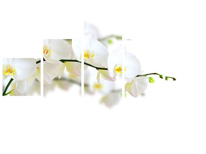 Aluminiumbild 5-teilig Weisse Orchideen