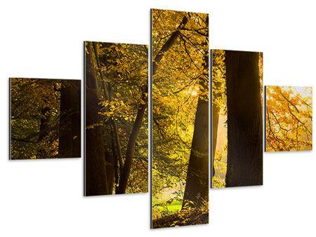 Aluminiumbild 5-teilig Herbstlaub