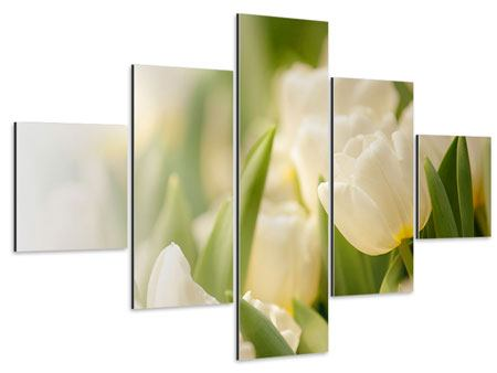 Aluminiumbild 5-teilig Tulpenperspektive