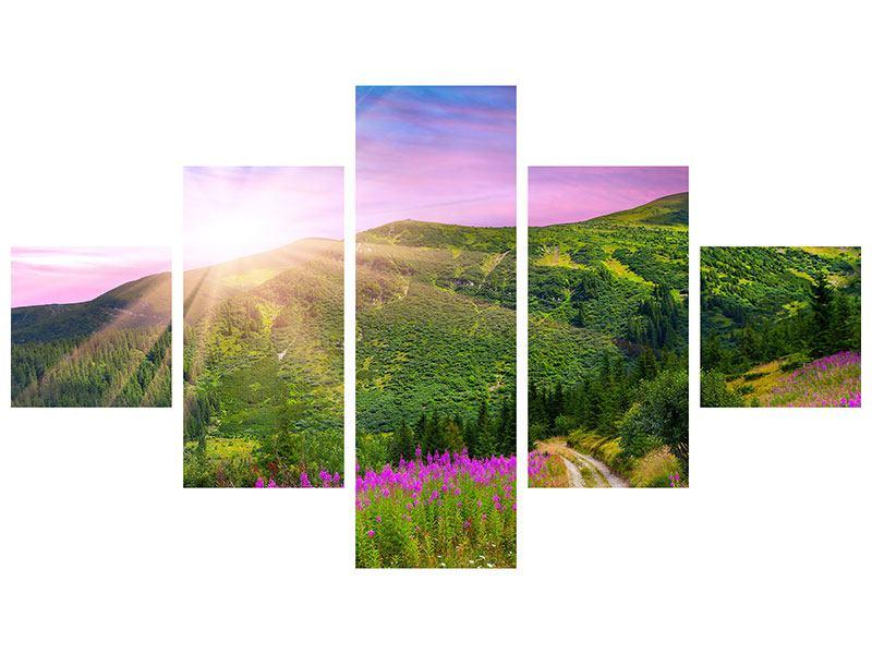 Aluminiumbild 5-teilig Eine Sommerlandschaft bei Sonnenaufgang