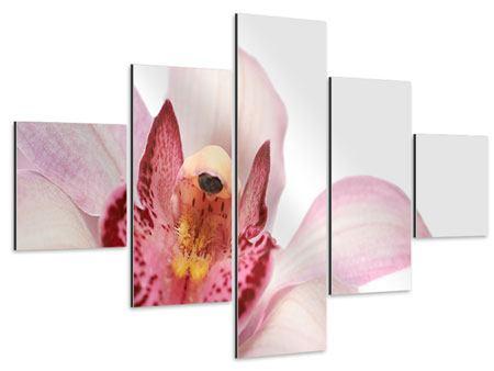 Aluminiumbild 5-teilig Orchideenblüte XXL