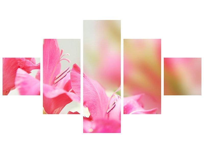 Aluminiumbild 5-teilig Gladiolen