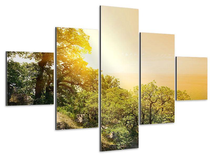 Aluminiumbild 5-teilig Sonnenuntergang in der Natur