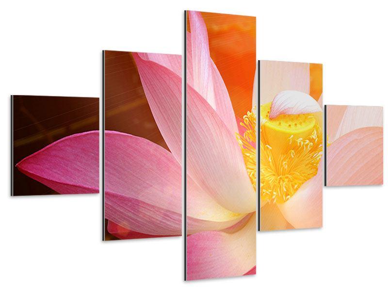 Aluminiumbild 5-teilig Close Up Lotus
