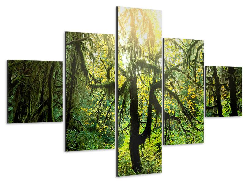 Aluminiumbild 5-teilig Verträumter Wald