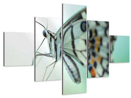 Aluminiumbild 5-teilig Schmetterling XXL
