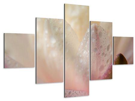 Aluminiumbild 5-teilig Close Up Seerose
