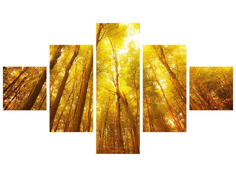 Aluminiumbild 5-teilig Herbstwald