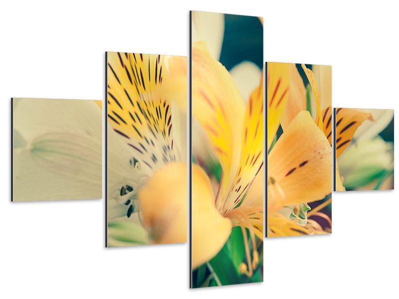 Aluminiumbild 5-teilig Tigerlilien
