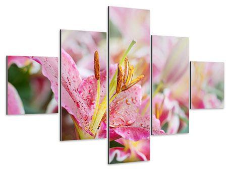 Aluminiumbild 5-teilig Lilien im Tau