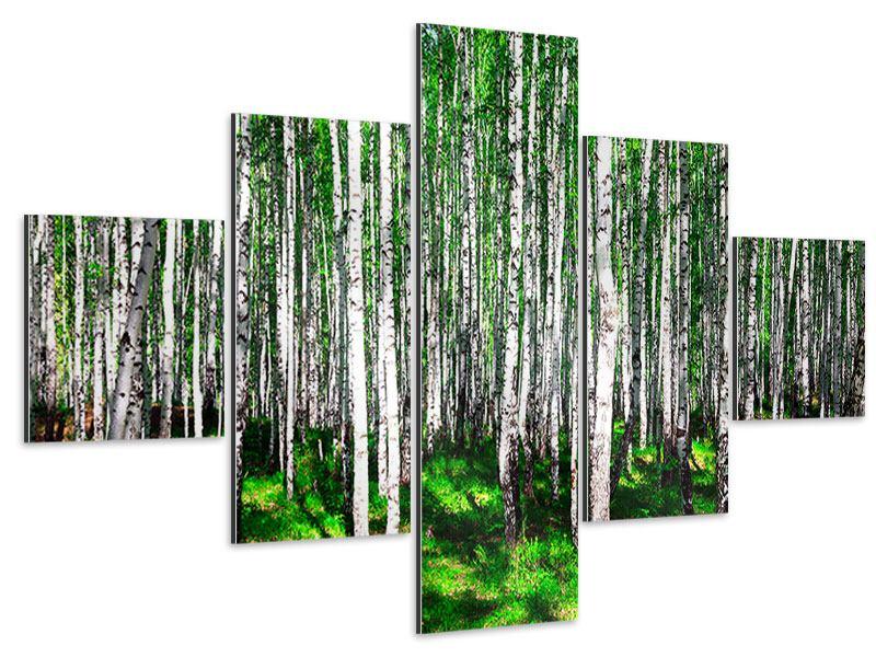 Aluminiumbild 5-teilig Sommerlicher Birkenwald
