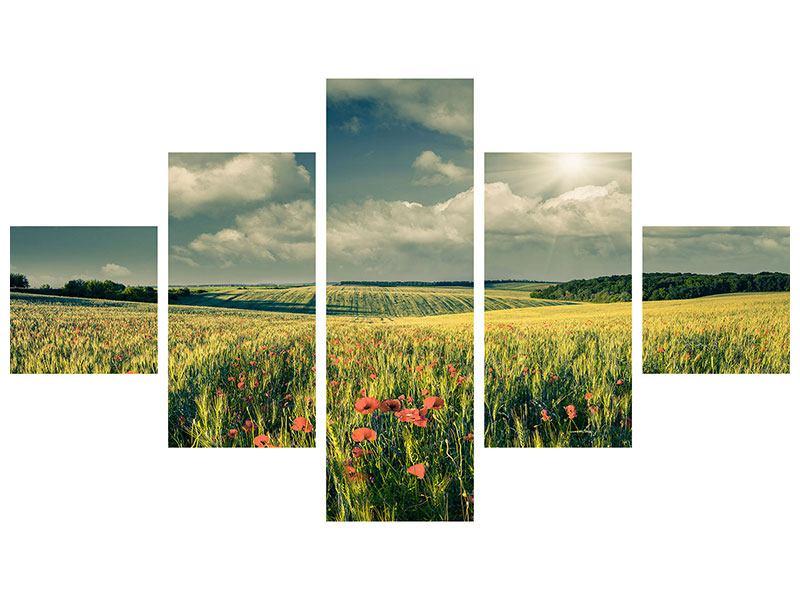 Aluminiumbild 5-teilig Der Mohn im Weizenfeld