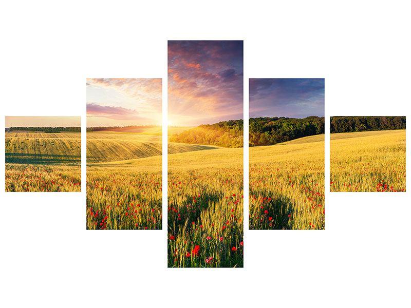 Aluminiumbild 5-teilig Ein Blumenfeld bei Sonnenaufgang