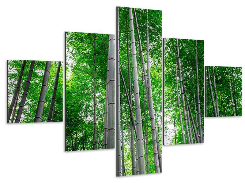 Aluminiumbild 5-teilig Bambuswald