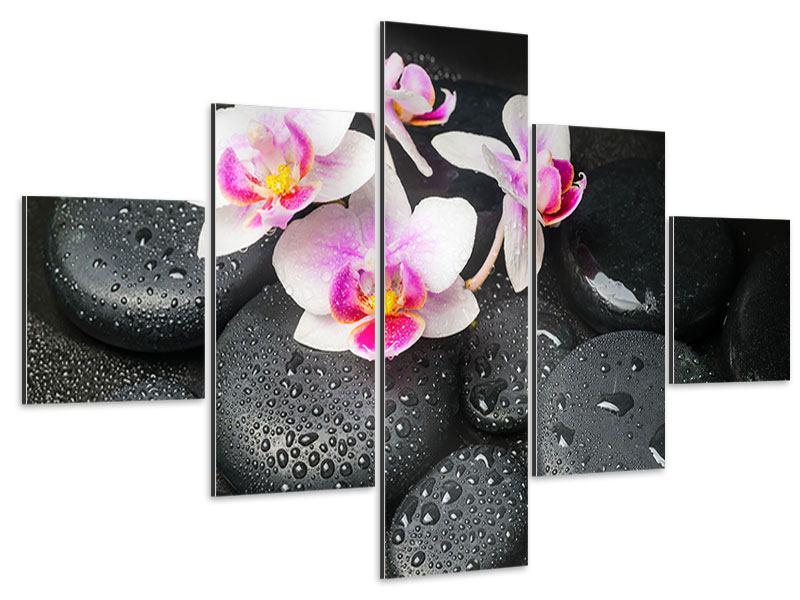 Aluminiumbild 5-teilig Feng-Shui-Orchidee Zen