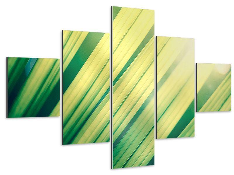 Aluminiumbild 5-teilig Beleuchtetes Palmblatt
