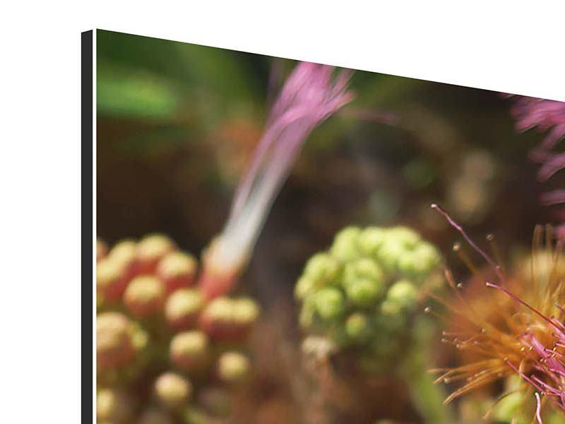 Aluminiumbild 5-teilig modern Die Regenbaumblüte