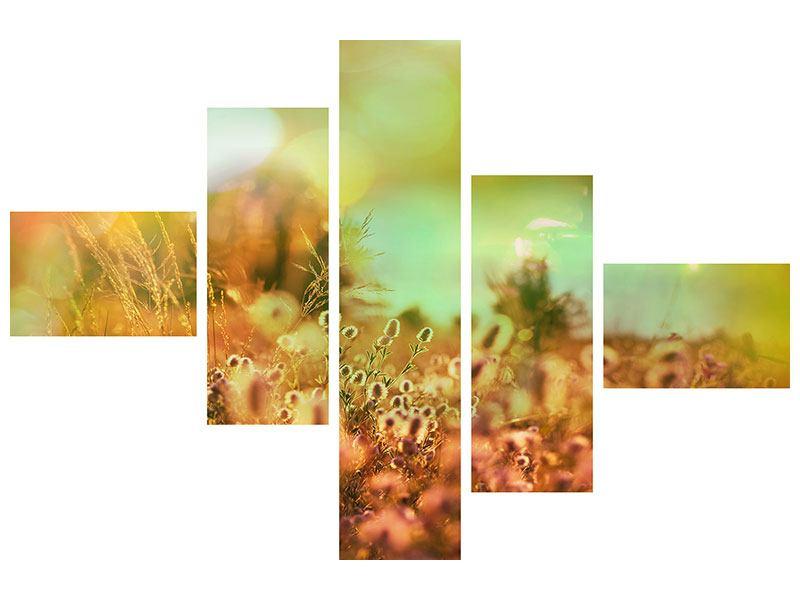 Aluminiumbild 5-teilig modern Blumenwiese in der Abenddämmerung