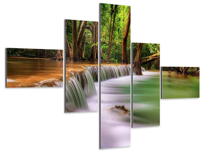 Aluminiumbild 5-teilig modern Deep Forest