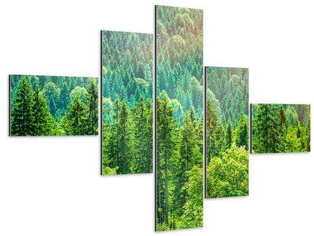 Aluminiumbild 5-teilig modern Der Waldhügel