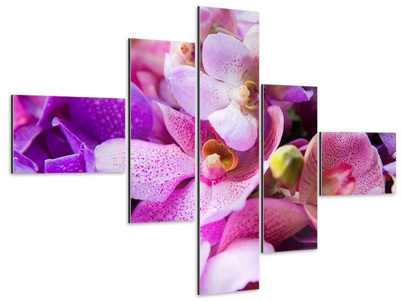 Aluminiumbild 5-teilig modern Im Orchideenparadies