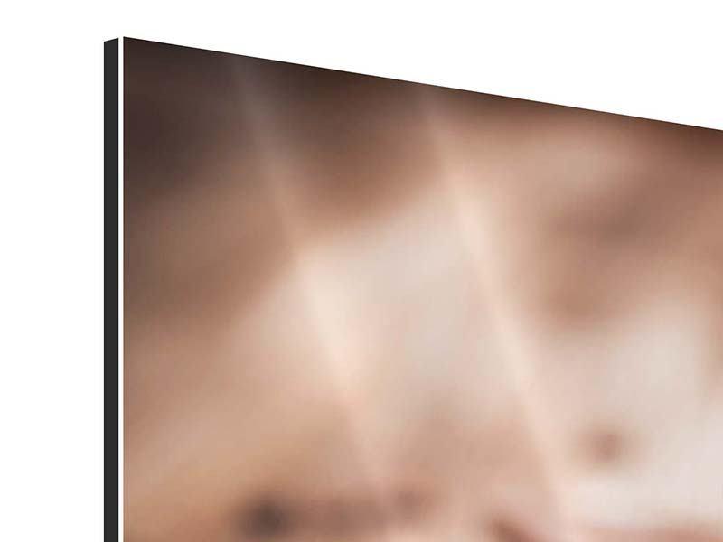Aluminiumbild 5-teilig modern Tiramisu