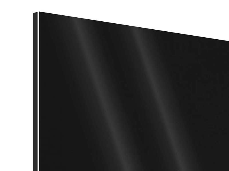 Aluminiumbild 5-teilig modern Nude