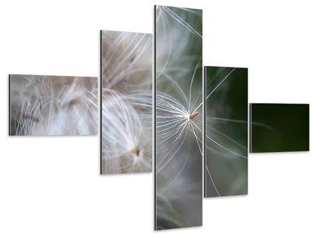 Aluminiumbild 5-teilig modern Close up Blütenfasern