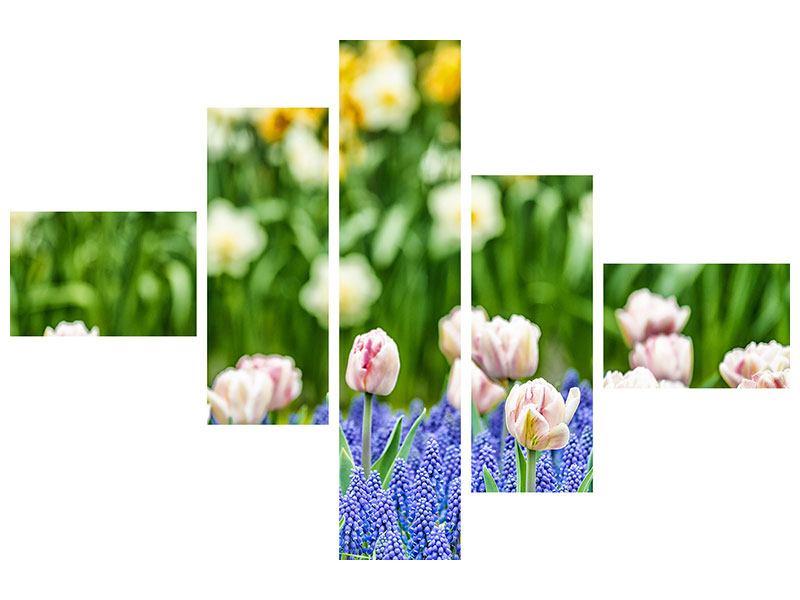 Aluminiumbild 5-teilig modern Ein Garten mit Tulpen